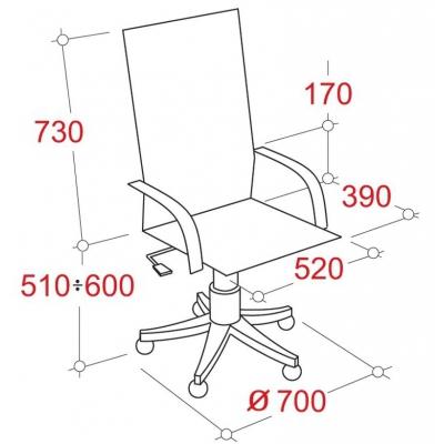 Кресло руководителя ортопедическое 771